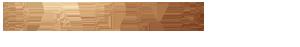Dapur Logo Zürich